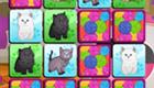 Juego de cartas de gatos
