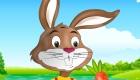 Juego de vestir a un conejo