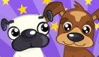 Concurso de perros