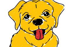 Dibujar perritos
