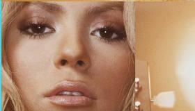 Shakira en rompecabezas