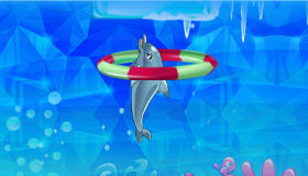 El delfín que salta